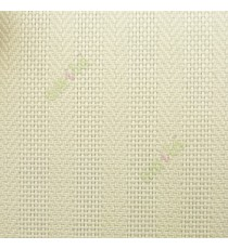 Beige color vertical stripes with texture finished weaving pattern vertical blind