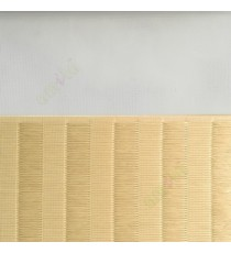 Beige color Vertical stripes with horizontal thread lines soft finished with transparent net fabric zebra blind