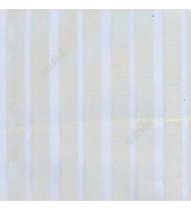 White color vertical pencil stripes net finished vertical and horizontal thread crossing checks poly sheer curtain