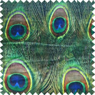Green Black Blue Yellow Color Beautiful Peacock Feather Surface Oval