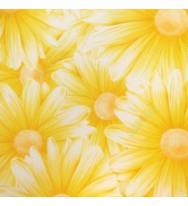 Awesome big beautiful flower looks like real 3D pattern yellow and white combination color of daisy flower wallpaper